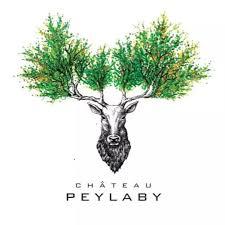 Chateau Peylaby